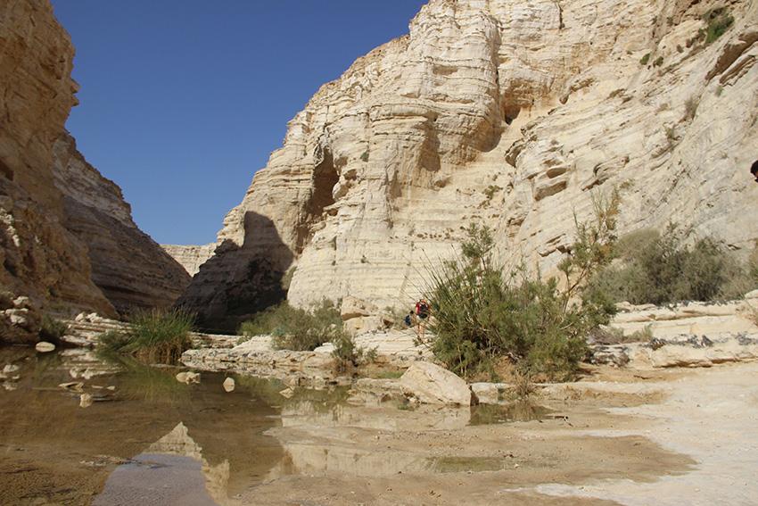 L'inizio del canyon che porta alla sorgente di Ein Avdat