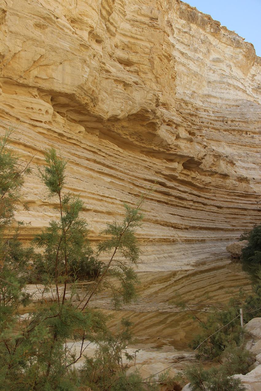 Una parete del canyon