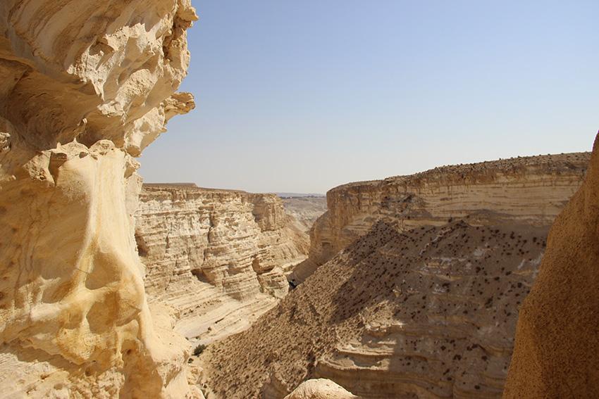 Vista dall'alto del canyon Ein Avdat