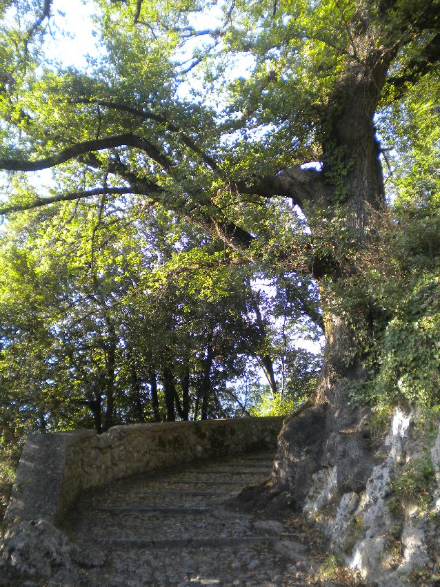 Subiaco, il sentiero che conduce al monastero di Santa Scolastica