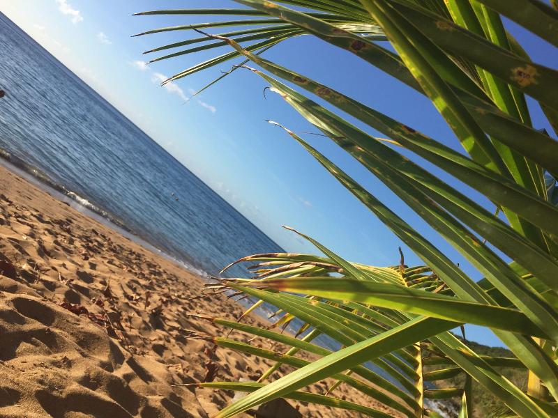 spiaggia grande anse
