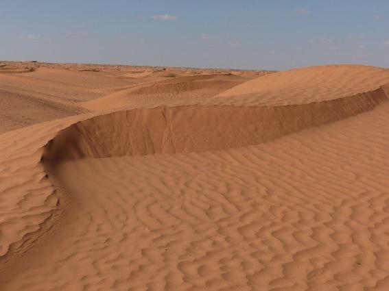 Dune di sabbia vicino all'oasi di Ksar Ghilane