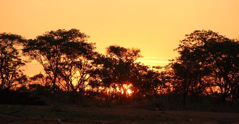 Mal d'Africa: la mia prima volta