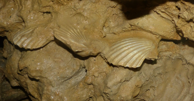 Palermo sotterranea