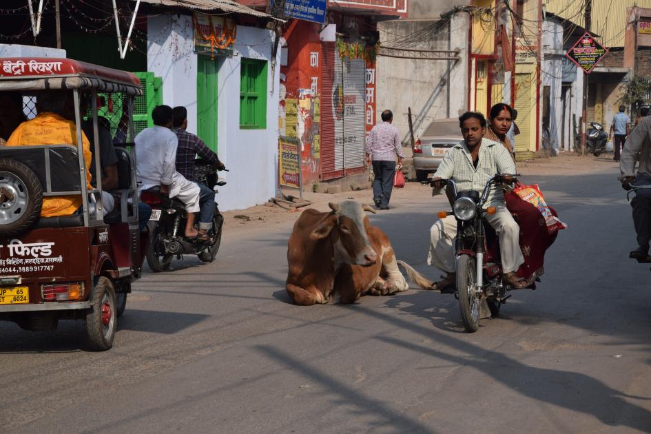 Benares: dialettica delle emozioni – Seconda parte