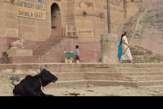 Benares: dialettica delle emozioni – Terza parte