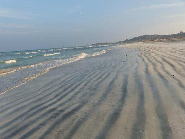 Spiaggia del mare arabico P1130289