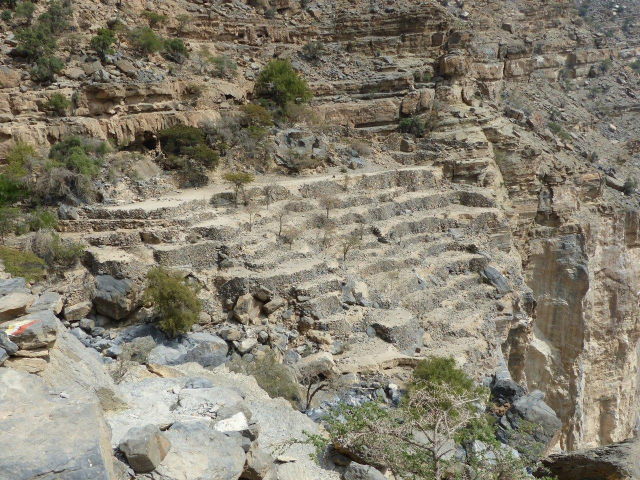 Terrazzamenti di Al Khateem - P1130028