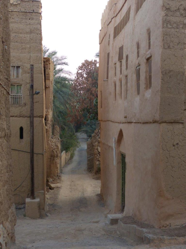 Villaggio Al Hamra P1120890