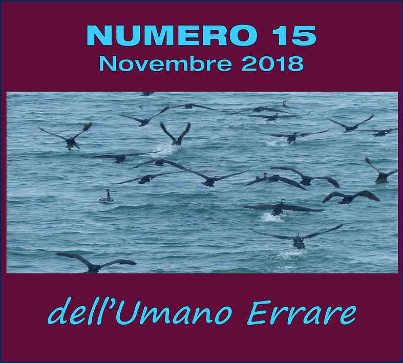 N° 15 – novembre 2018