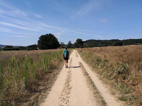 Camminare, verso Santiago de Compostela