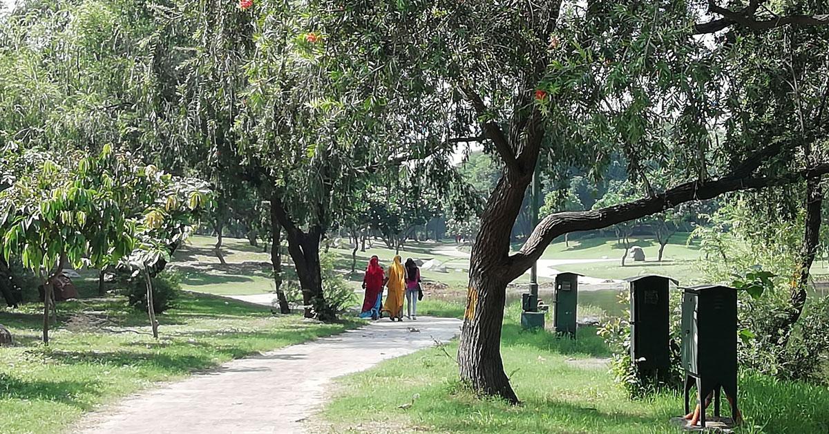 Delhi, sulla via del ritorno