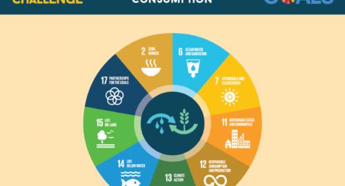 Alimentazione e sostenibilità: il paradosso del falso ottimismo